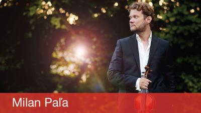 Milan Paľa, husle